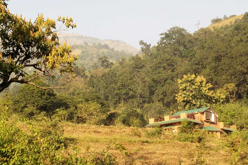 Sitabani Wildlife Reserve | The ancient forest beckons